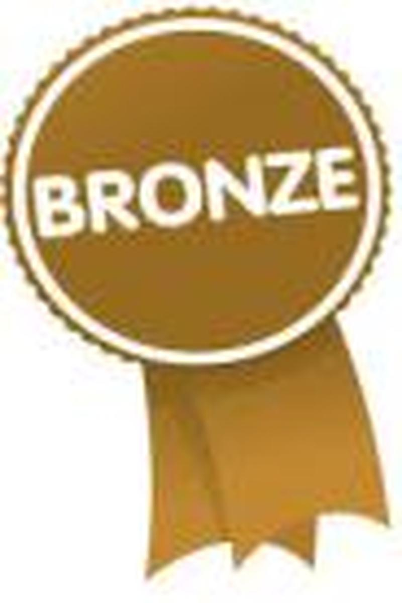 VMC Bronze Donation